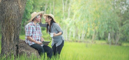 2 Menschen am Baum 520x245 - Life Plus Erfahrung : Mit der 21 Tage Stoffwechselkur Life Plus abnehmen