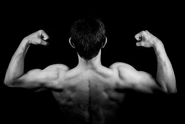 männliche Rückenmuskulatur