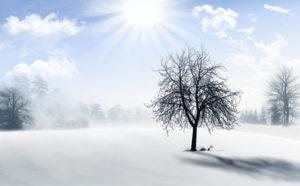 551736 web R K by Rita Thielen pixelio.de 300x186 - Gesund durch den Winter - 7 Tipps