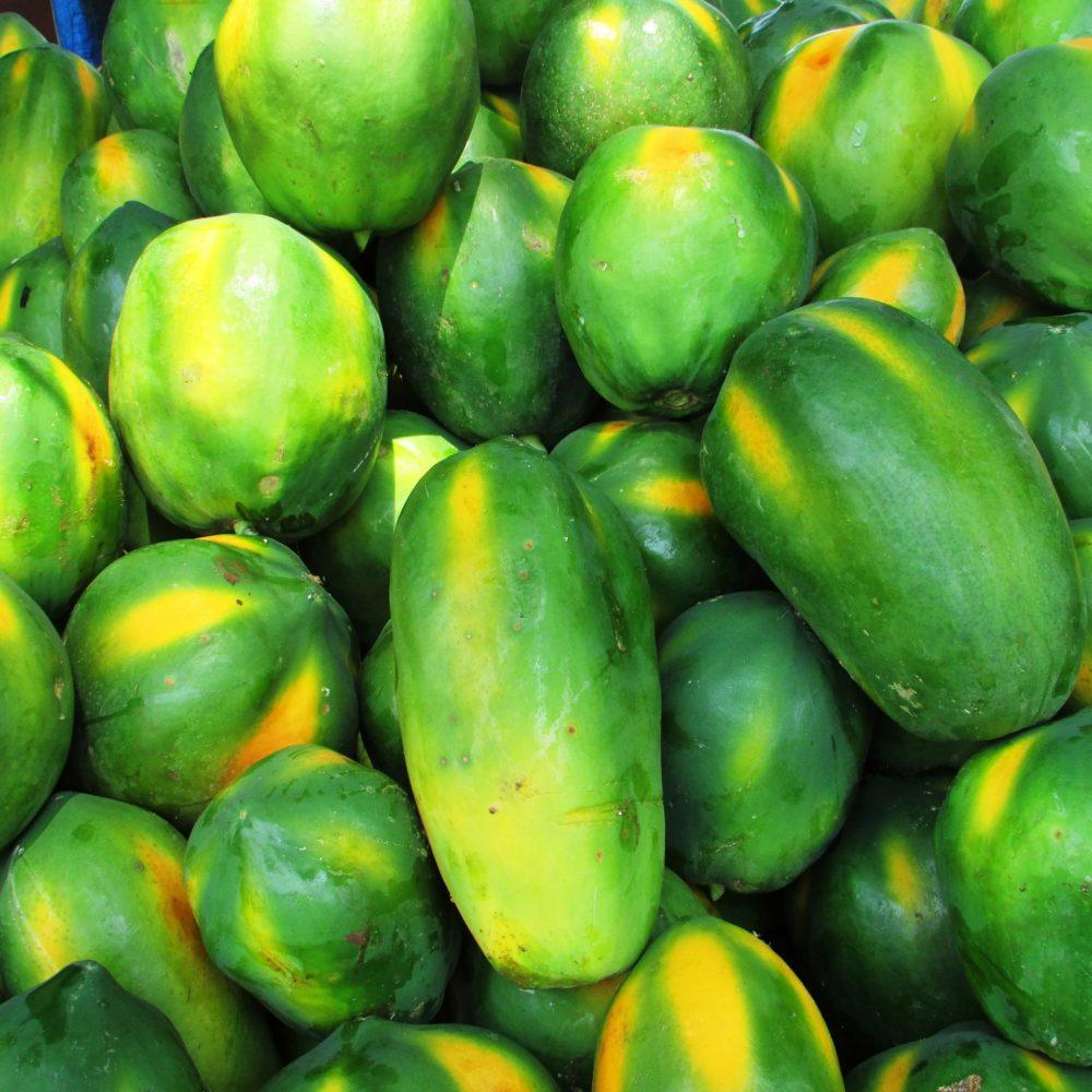 gesundeszentrum papaya 331280 1920 scaled - Manju Fermentationsgetränk • Steigerung des Wohlbefindens?